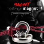 Magnet It!